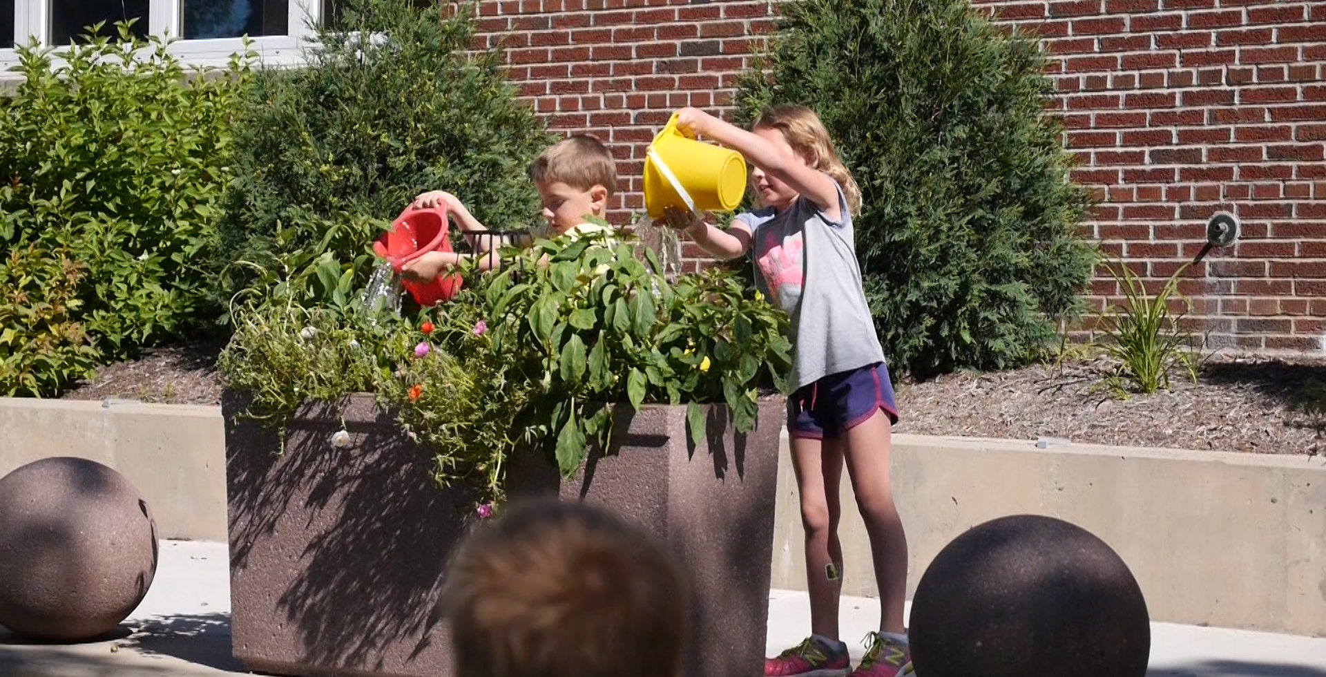 Kids watering container garden
