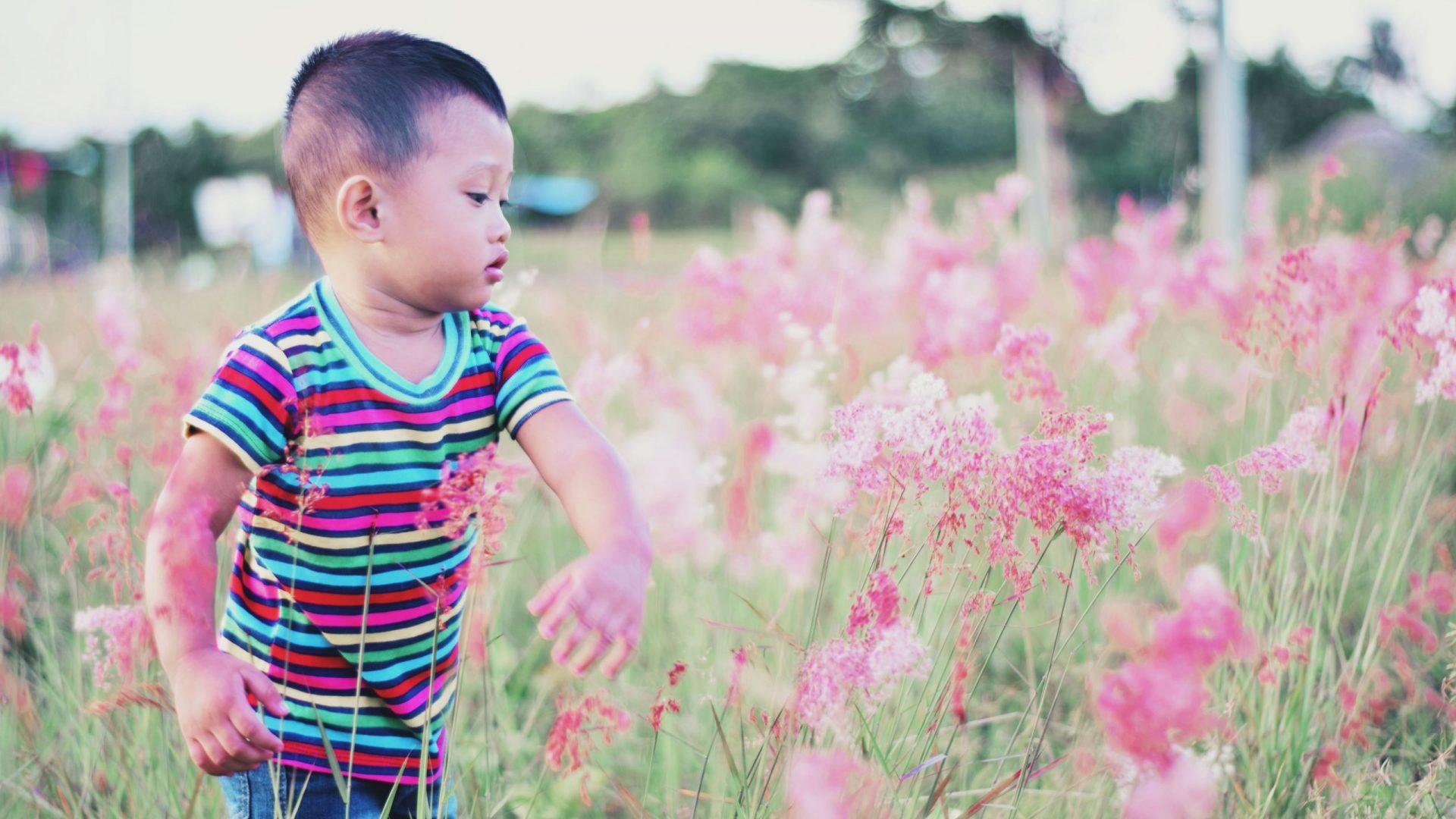 Little boy swatting flowers