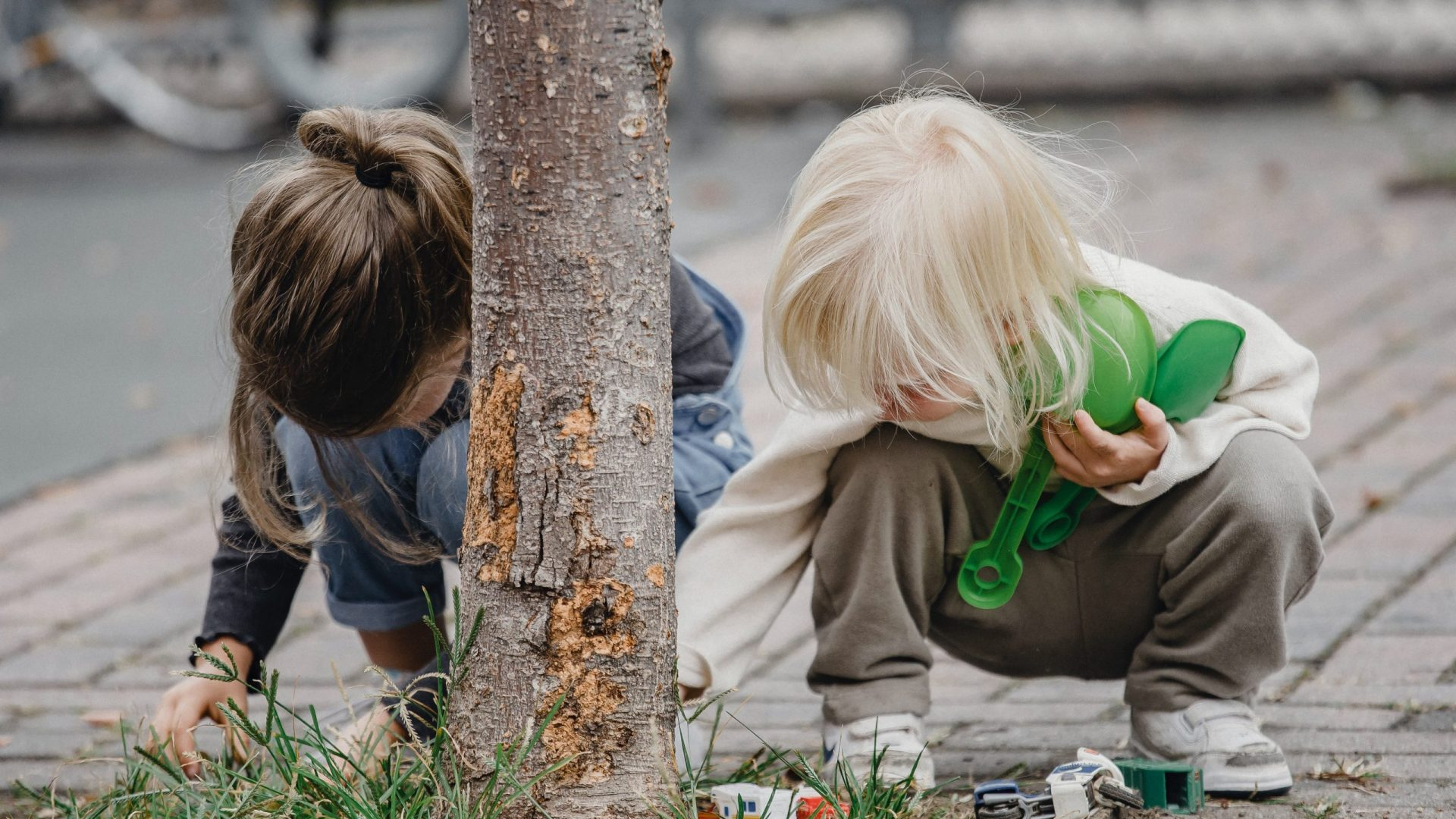 kids playing at a tree