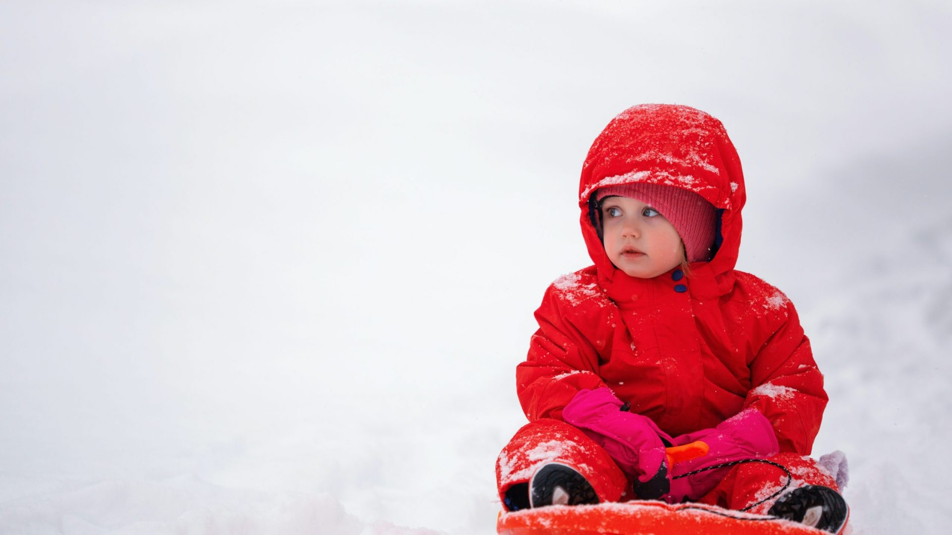 toddler in red sled