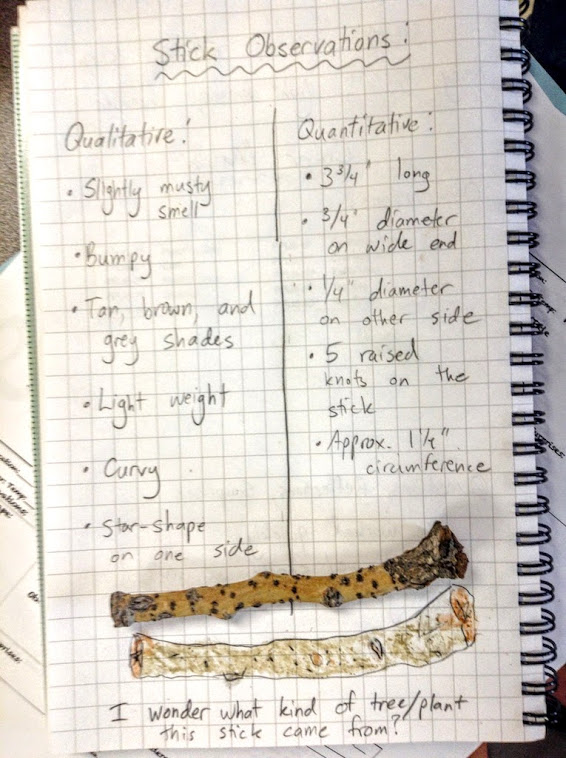 Stick Observations journal page